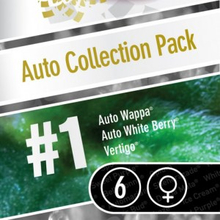Auto Collection pack #1 от 2880 руб. | Alfaseeds.com