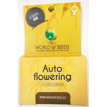 Autoflowering Collection от 3450 руб. | Alfaseeds.com